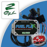 Flex Fuel kit 2 Cylinders